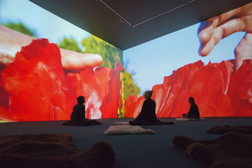 Installation view 15 for Pipilotti Rist: Stay Stamina Stay