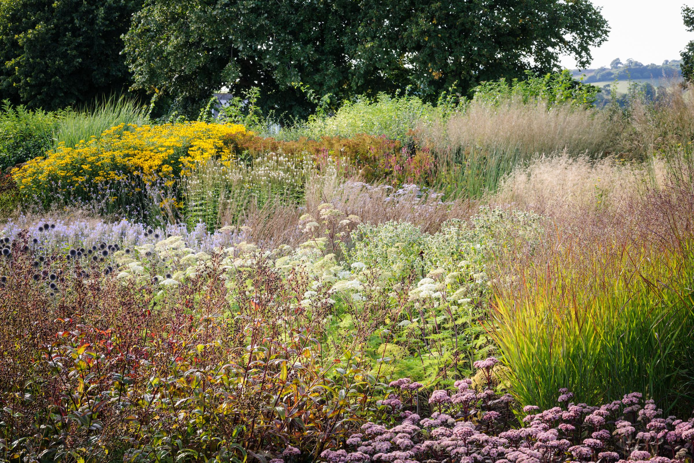 Garden — Hauser & Wirth Somerset