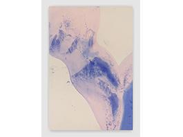 Rita Ackermann: Turning Air Blue