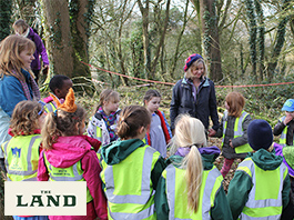 Art & Forest School Workshops for Primary Schools